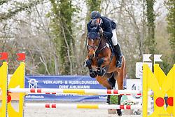 09.1, Youngster-Springprfg. Kl. M** 6+7j. Pferde,Ehlersdorf, Reitanlage Jörg Naeve, 29.04. - 02.05.2021,, Jan Philipp Schultz (GER), Vittorio S,