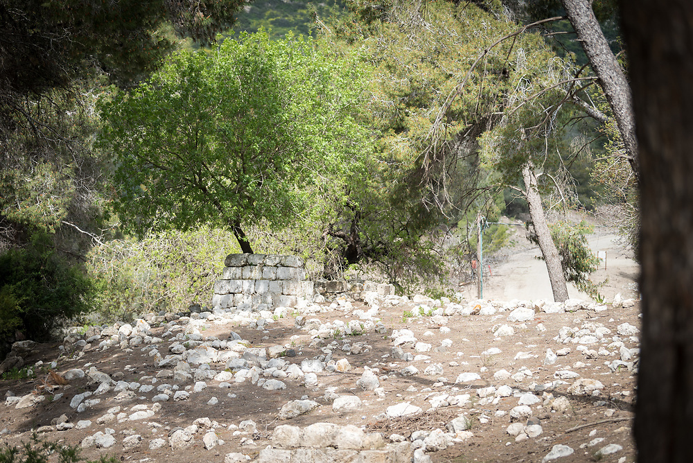 15 March 2019, Ma'alul: Ma'alul, a Palestinian village destroyed in the 1948 Arab-Israeli war, sees a visit by ecumenical accompaniers from the World Council of Churches Ecumenical Accompaniment Programme in Palestine and Israel.