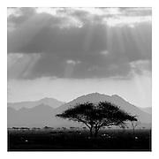 Fujairah, U.A.E., Nov 24, 2004, Desert. PHOTO © Christophe VANDER EECKEN