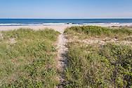Path to Beach, Atlantic Coast, Water MIll, NY