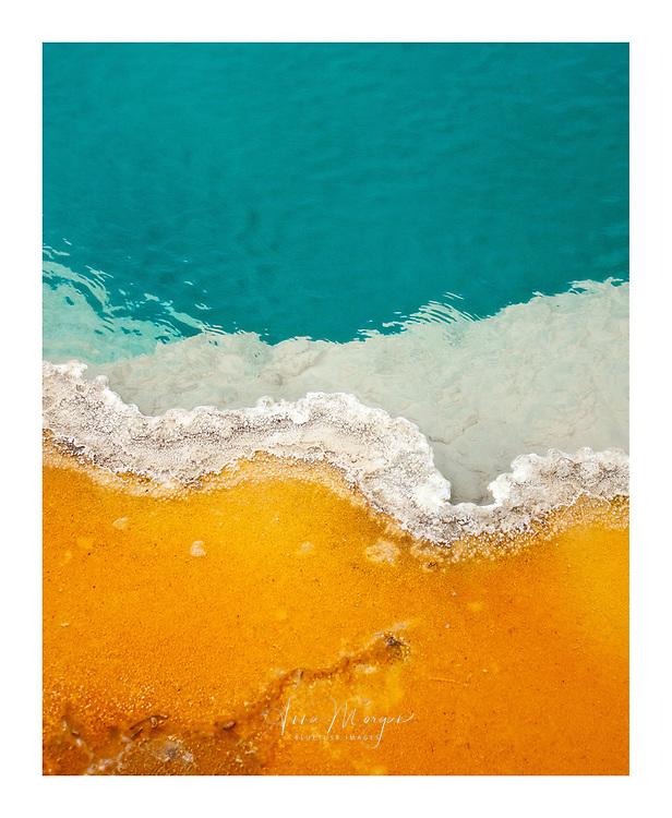 Thermophilic bacteria creating colourful shades at black pool, west thumb geyser basin, yellowstone national park