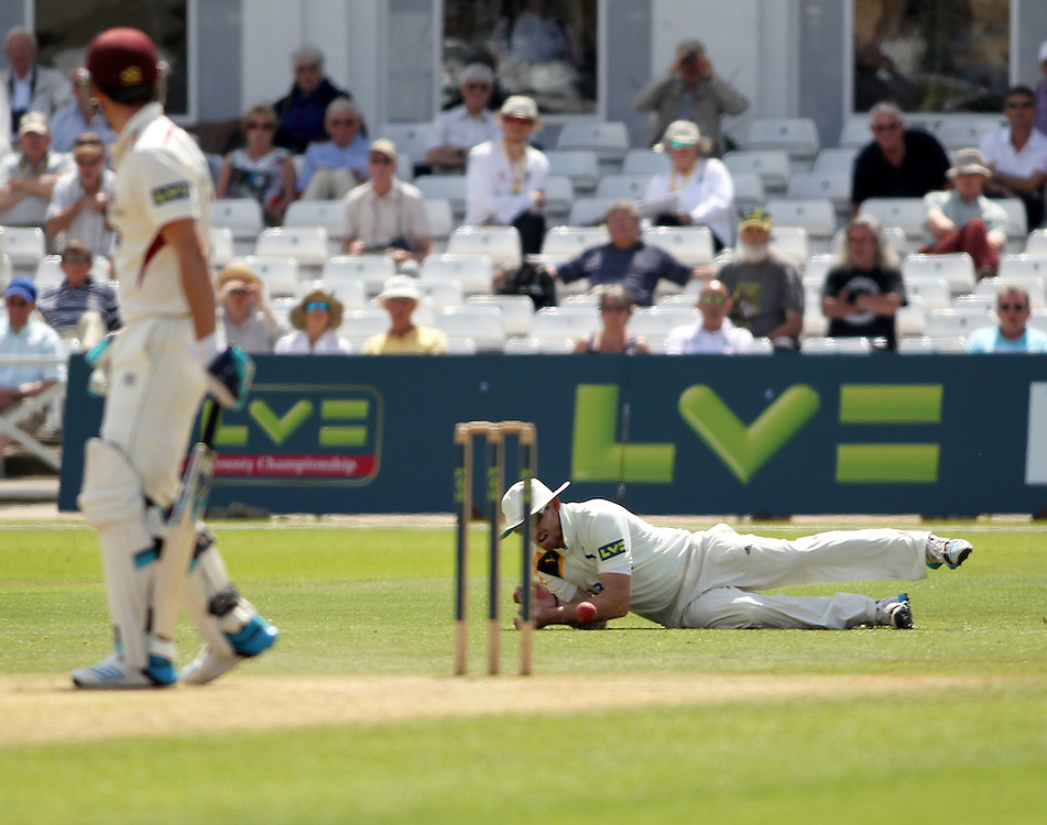 Nottinghamshire's wicket-keeper Riki Wessels drops Somerset's Craig Kieswetter at slip<br /><br />Photographer Mick Walker/CameraSport<br /><br />County Cricket - LV= County Championship Division One - Nottinghamshire  v  Somerset  - Day 3 - Tuesday 24th June 2014 - Trent Bridge - Nottingham<br /><br />© CameraSport - 43 Linden Ave. Countesthorpe. Leicester. England. LE8 5PG - Tel: +44 (0) 116 277 4147 - admin@camerasport.com - www.camerasport.com
