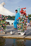 Mazar-e-Sharif, Afghanistan. Shrine to Hazrat Ali with flying dove and plastic flowers.