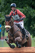 HERBST GOLDEN ECLIPSE ridden by Arthur Duffort taking part in the Equitrek CCI*** cross country on day three of the Bramham International Horse Trials 2017 at Bramham Park, Bramham, United Kingdom on 11 June 2017. Photo by Mark P Doherty.