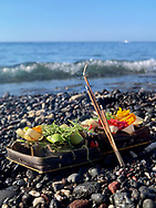 An offering is placed for the tide to take as it comes in on the black beaches of Northern Bali.