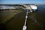 Container ships working at the Georgia Ports Authority Garden City Terminal, Monday,  Oct. 27, 2014, in Savannah, Ga., in Savannah, Ga.  (GPA Photo/Stephen B. Morton)