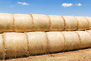 Stack of round hay bales on a farm after harvest  in rural Kinypanial, Victoria, Australia <br /> <br /> Editions:- Open Edition Print / Stock Image