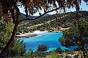 Coastal landscape view through trees of blue sea sea sandy beach,  island of Ibiza, Balearic Islands, Spain, 1950s