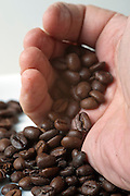 Close up of a palm of a hand pouring out roasted Coffee Beans