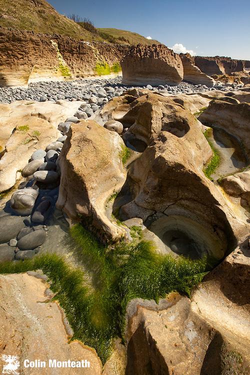 Rock platform at low tide, Paterau beach, Golden Bay, West Coast.