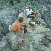 Ankarana was a really special experience for me. I loved the marriage between the sculpted limestone rocks and the lush vegetation. The tsingy limestone formations are amazing but quite hazardous to walk around on because the rock has been eroded into vertical jagged blades. I discovered that some of the local crowned lemurs have become semi-habituated to visitors, and associate them with snacks, which is not usually a good thing, but unfortunately it is often inevitable, especially if the guides encourage it too. I was able to camp overnight in the forest on the way back to the park headquarters, and had a memorable soak in a cooling stream to listen to the nocturnal sounds of the forest – and to avoid the worst mosquitoes on the trip so far. <br />