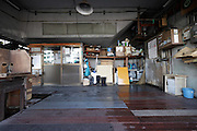 Tokyo, Tsukiji wholesale fish market  after hours,.crushed ice shop
