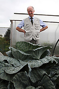 Peter Glazebrook with a giant cabbage. He has held eight world records in his time but is currently holder of only two with heaviest parsnip and longest beetroot, 12lb and 21ft. respectively. Giant vegetable growing is not a hobby for the faint hearted. The growers have to tend to the vegetables almost every day (including Christmas) spending up to 80 hours a week, tending, nurturing, growing and spending thousands on fertilisers, electricity and green houses. The reward is to be crowned world record holder of largest, longest or heaviest in class, cabbages weighing in at 100lb, carrots stretching 19 ft and pumpkins tipping the scales at 800lb. it's a competitive business though and global; some times the record may stand for only hours before a fellow competitor, somewhere,  knocks a grower off the coveted spot.