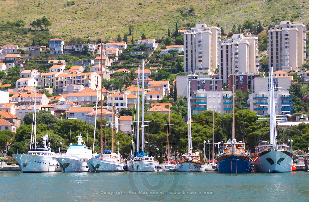Several beautiful wooden cruising, sailing and fishing boats ships yachts painted white moored along they key in the harbour. Modern buildings creeping up the hillside. Boats sitting like ducks in a row. Luka Gruz harbour. Dubrovnik, new city. Dalmatian Coast, Croatia, Europe.