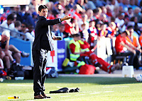 Fotball , 11. juni 2013 , Privatkamp , Norge - Makedonia<br /> Norway - FYR Macedonia 2-0<br /> <br /> trener Makedonia , Chedomir Janevski