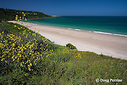 beach at Barrepta Cove, or Carbis Bay, near St. Ives, Cornwall, Great Britain, United Kingdom