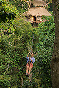 LAOS, Bokeo Nature Reserve, tropical rainforest, Gibbon Experience: ecotourism and conservation project, Kelly zipping on zip line from distant tree house