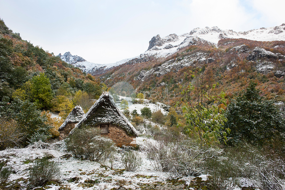 Teito en Parque Natural de Somiedo ©Country Sessions / PILAR REVILLA