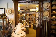 Newt at The Royal, Montecristi Panama Hats, Waikiki, Oahu, Hawaii