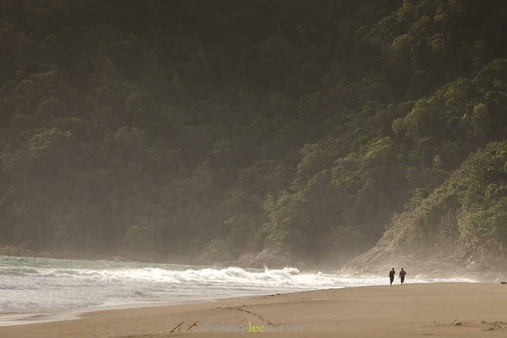 Couple walking along Sukamade beach, Forest in the background, Meru Betiri National Park, East Java, Indonesia, Southeast Asia