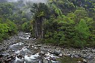 Tangjiahe river, Tangjiahe National Nature Reserve, NNR, Qingchuan County, Sichuan province, China