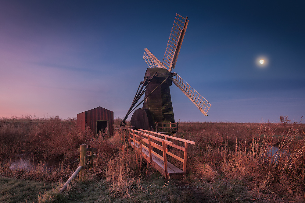 Another Herringfleet from Tuesday morning