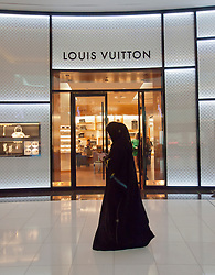 Louis Vuitton store in Dubai Mall in Dubai United Arab Emirates UAE
