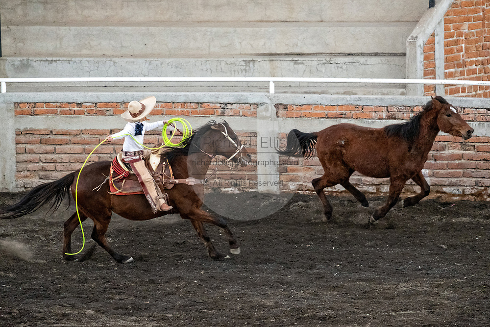 Luis Alfonso Franco chases a wild mare, during an event called Roping on Foot at a practice session in the Jalisco Highlands town of Capilla de Guadalupe, Mexico. The roping event is called Manganas a Pie or Roping on Foot and involves a charro on foot roping a wild mare by its front legs to cause it to fall and roll once. The wild mare is chased around the ring by three mounted charros.