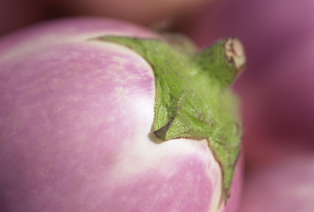 Extreme close up selective focus photograph of a few Blush Eggplants