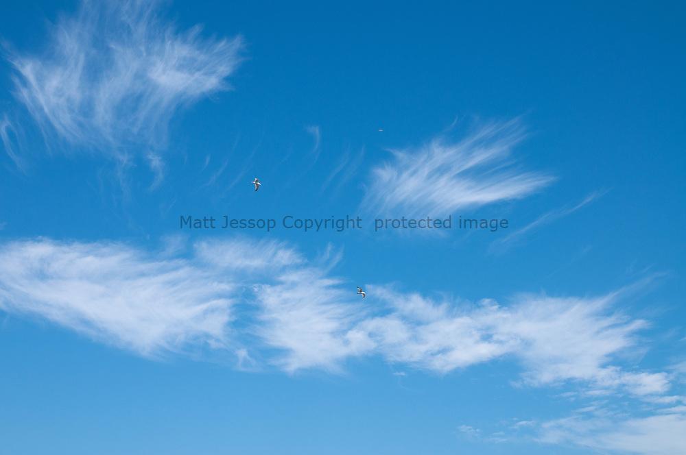 Skyscape 0017