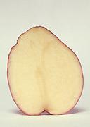 cross section of an potato