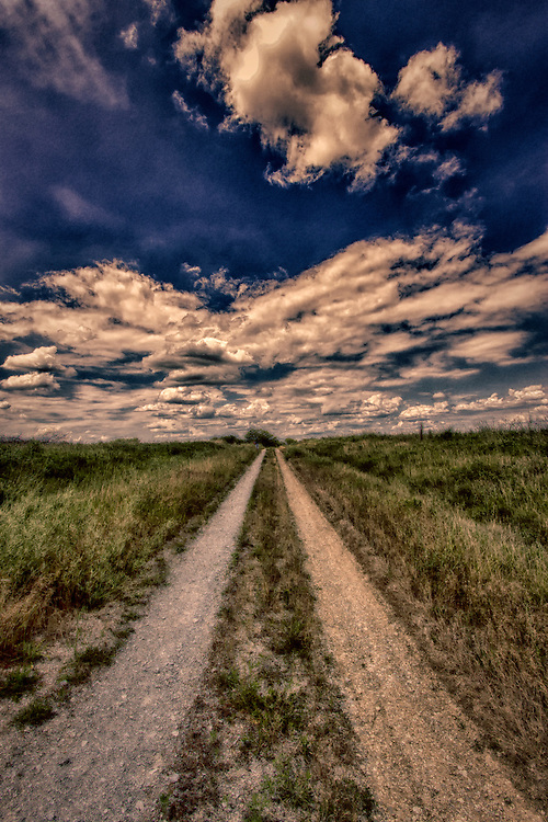 A lonely dirt path stretches through the backwoods at Busch Wildlife Sanctuary