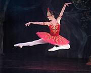 GASTON DE CARDENAS/EL NUEVO HERALD -- Member of the Arts Ballet Theater of Florida perform Stravinsky's Firebird Sunday October 16, 2005.
