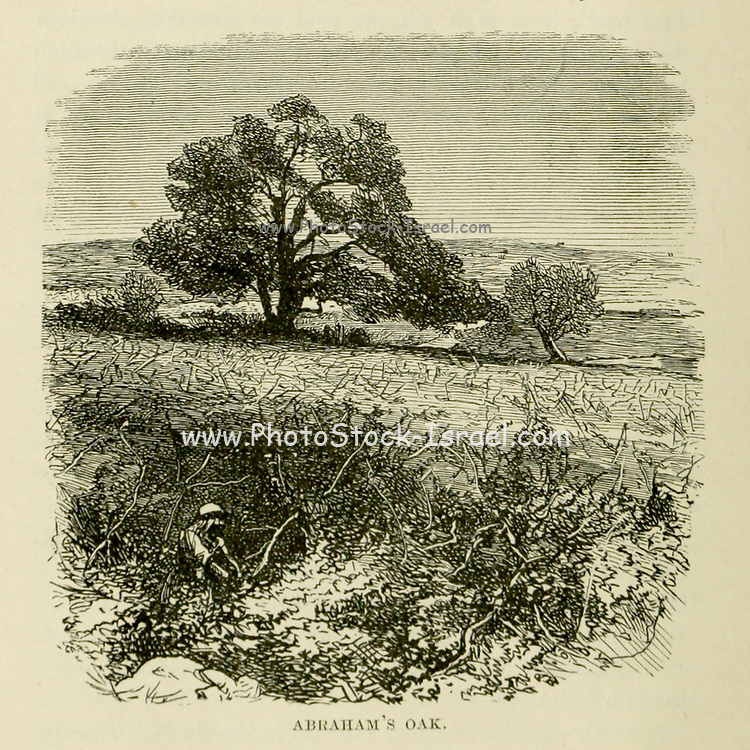 Abraham's Oak From the Book 'Bible places' Bible places, or the topography of the Holy Land; a succinct account of all the places, rivers and mountains of the land of Israel, mentioned in the Bible, so far as they have been identified, together with their modern names and historical references. By Tristram, H. B. (Henry Baker), 1822-1906 Published in London in 1897