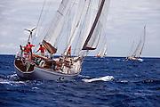 Metani sailing in the Cannon Race at the Antigua Classic Yacht Regatta.