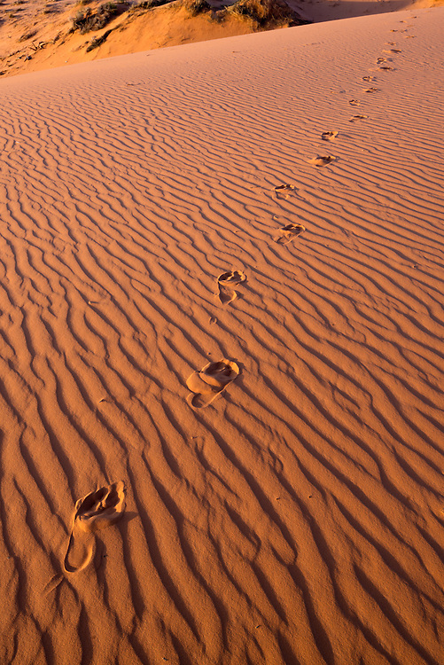 Barefoot footprints in sand dune, Moquith Mountain Wilderness Study Area in Southern Utah.
