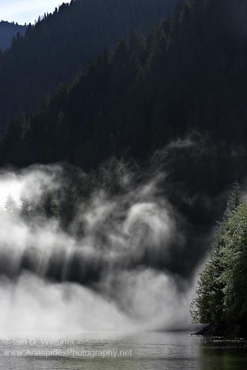 Sea Fog and Rays, British Columbia - Canada