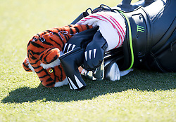 January 27, 2017 - San Diego, Calif, USA - Tiger Woods' bag lies on the ground during the second day of the Farmers Insurance Open golf tournament at Torrey Pines in San Diego, Calif. on Friday, January 27, 2017. (Photo by Kevin Sullivan, Orange County Register/SCNG) (Credit Image: © Kevin Sullivan/The Orange County Register via ZUMA Wire)