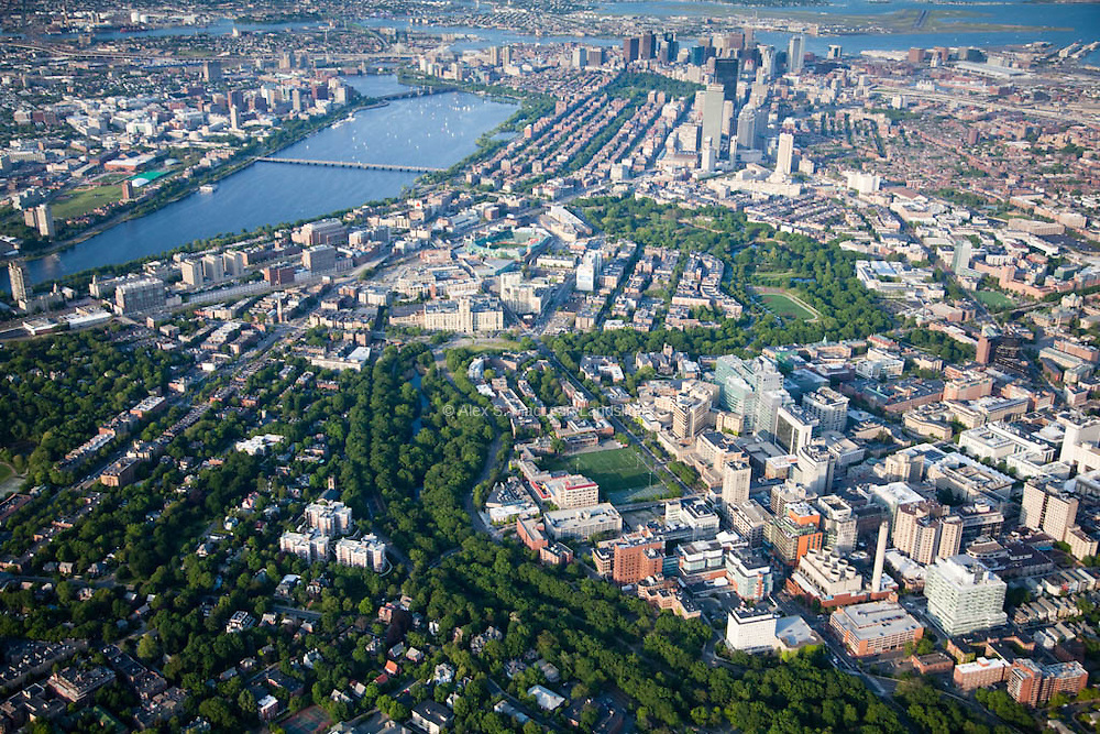 The Emerald Necklace, a string of parks designed by Olmsted, snakes through Harvard Medical area to downtown