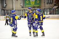 Ishockey , GET-Ligaen , Eliteserien , Siste serierunde<br /> 8. Mars 2016  , 20160308<br /> Manglerud - Storhamar<br /> Storhamars Christian Larriveé jubler for sitt mål til 0-1 med Eirik B. Skadsdammen (8) og Joakim Jensen (21)<br /> Foto: Sjur Stølen / Digitalsport