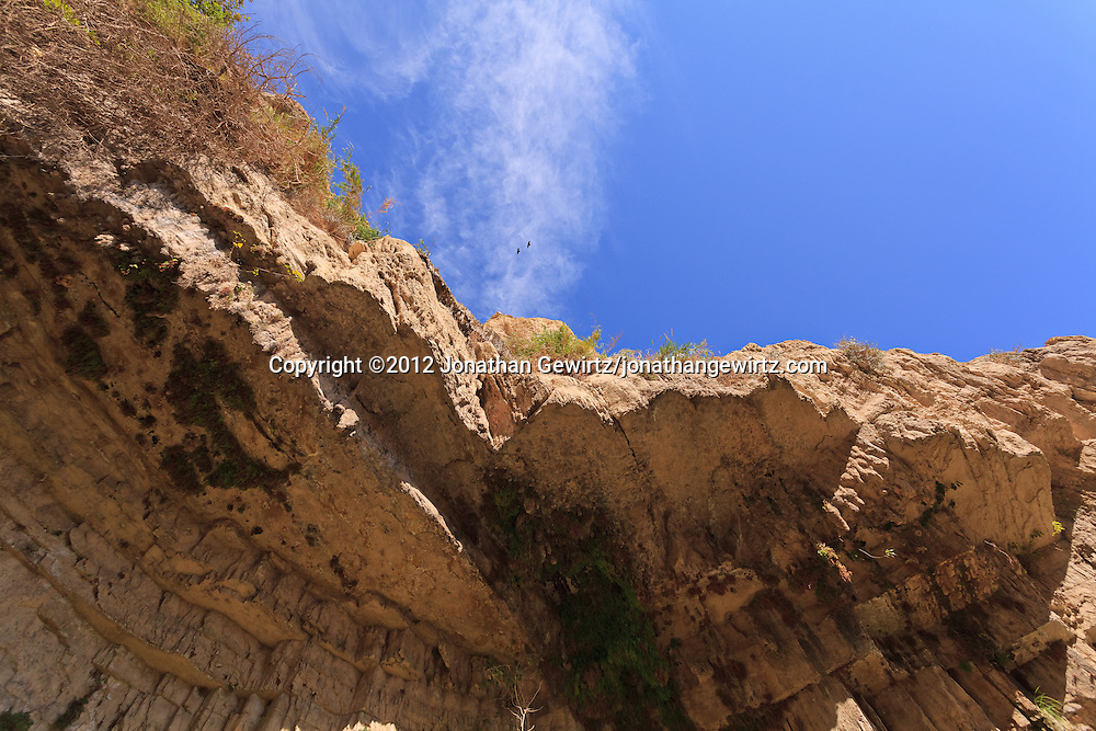 Ravens fly over Nahal David canyon near the David Waterfall in the Ein Gedi nature preserve. WATERMARKS WILL NOT APPEAR ON PRINTS OR LICENSED IMAGES.