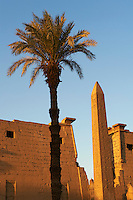 Egypte, Haute Egypte, vallée du Nil, Louxor, temple de Louxor classé Patrimoine Mondial de l'UNESCO, Obeslique jumeau de celui de la Concorde de Paris // Egypt, Nile Valley, Luxor, The Temple of Luxor with Obelisk