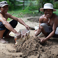 Farners put compost into sacks on their farm in Cambodia