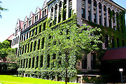 Quad building at the University of Chicago. Chicago Illinois USA