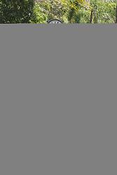 August 28, 2017 - Ação promocional do filme 'Polícia Federal – A Lei É Para Todos' coloca pilha de dinheiro cenográfico no centro de Curitiba, representando a estimativa de 4 bilhões de reais desviados em contratos públicos investigados pela operação Lava Jato. (Credit Image: © Theo Marques/Fotoarena via ZUMA Press)