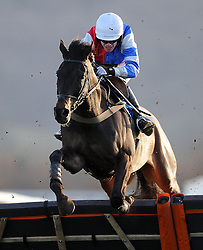 Kahdian ridden by Gary Derwin South West Racing Club Handicap Hurdle (Class 5) (4YO plus) - Photo mandatory by-line: Harry Trump/JMP - Mobile: 07966 386802 - 17/02/15 - SPORT - Equestrian - Horse Racing - Taunton Racecourse, Somerset, England.