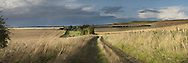 Panoramic view of White Horse Hill in Uffington, Oxfordshire, Uk