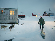 Returning in Isortoq after a successful seal hunt, with hunters Bent and Dina Igniatiussen. Life in and around the small Inuit settlement of Isortoq (population of 64), in East Greenland.