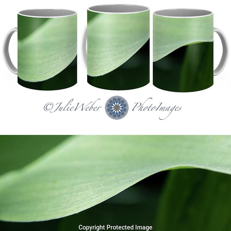 Coffee Mug Showcase 22 - Shop here:  https://2-julie-weber.pixels.com/featured/the-allure-of-a-curve-julie-weber.html