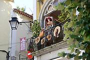 Sintra, de Monte da Lua (maanberg), is een magische, mysterieuze plaats waar mens en natuur in zodanig perfecte harmonie leven dat UNESCO het stadje op de werelderfgoedlijst heeft geplaatst.<br /> Sintra, the Monte da Lua (Moon Mountain), is a magical, mysterious place where people and nature live in such perfect harmony that UNESCO has placed the town on the World Heritage List